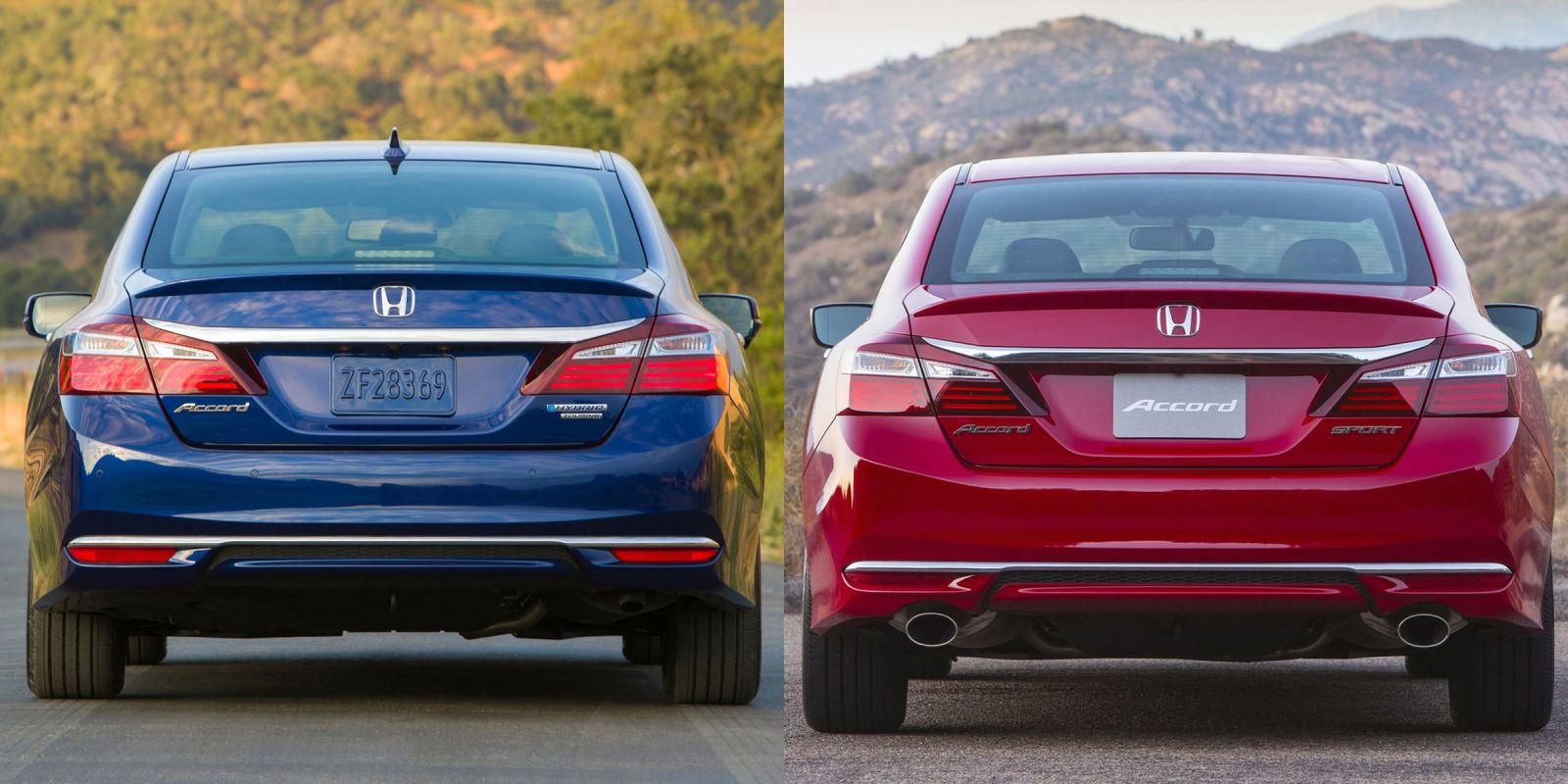 Accord Sport or Accord Hybrid: Which One Is Actually Cooler?